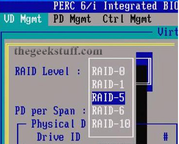 Select RAID Level for Dell PowerEdge T100 Server