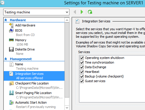 Hyper-V Integration Service Select Services