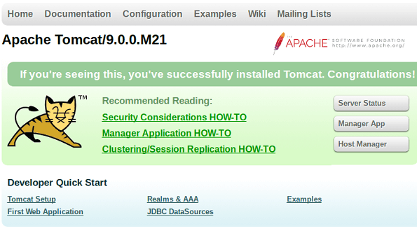 Apache Tomcat 9 Home Page