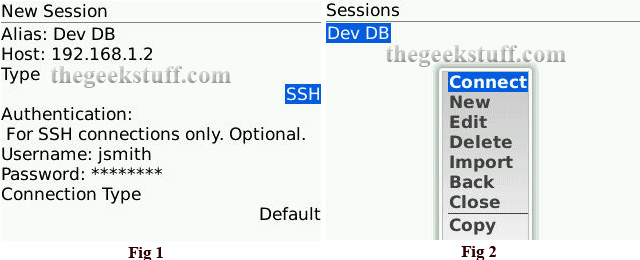 Create SSH Session and Connect from BlackBerry Curve