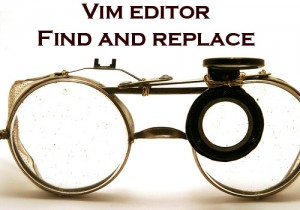Vim Editor Search and Replace Syntax