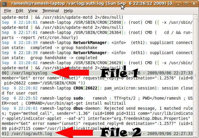3 Methods To View tail -f output of Multiple Log Files in One Terminal
