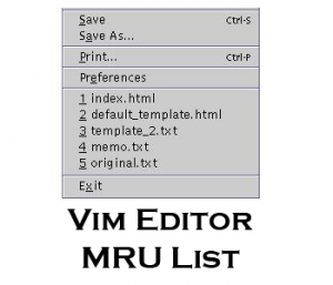 Vi and Vim Editor MRU List for Unix and Linux