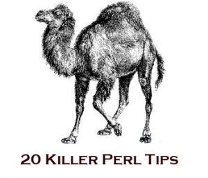 Perl Tutorial for Beginners