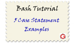 5 Bash Case Statement Examples