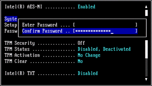 How to Enable DELL BIOS Password for both Setup and System