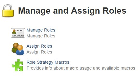 Jenkins Manage and Assign Roles