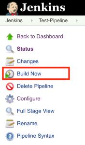 [Jenkins Build Now]